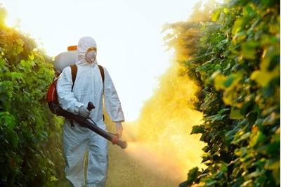 Pesticidi in Agricoltura: acque e tavole italiane piene di veleni