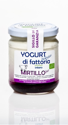 Immagine di YOGURT MIRTILLO 170G CASALE NIBBI